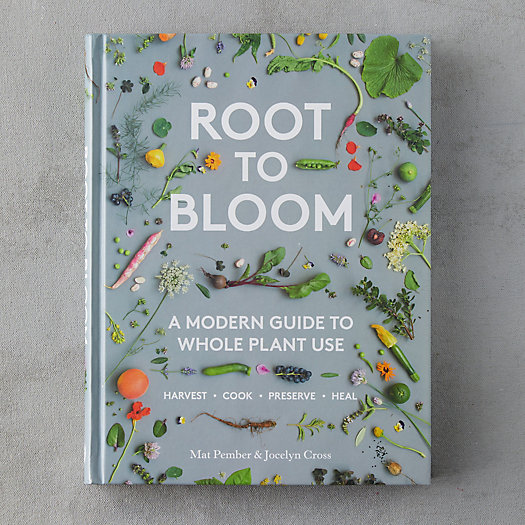 View larger image of Root to Bloom