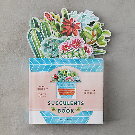 View larger image of Succulents in a Book