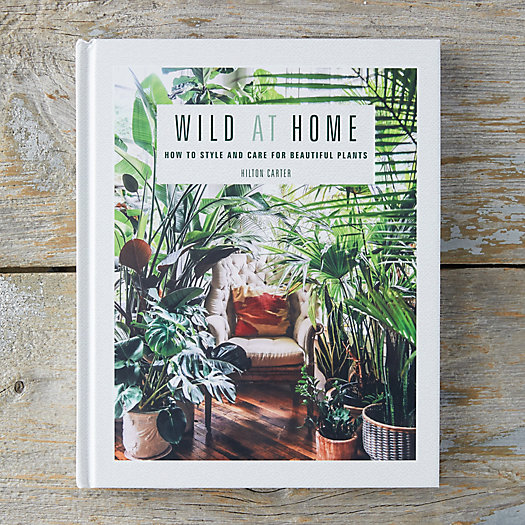 View larger image of Wild at Home