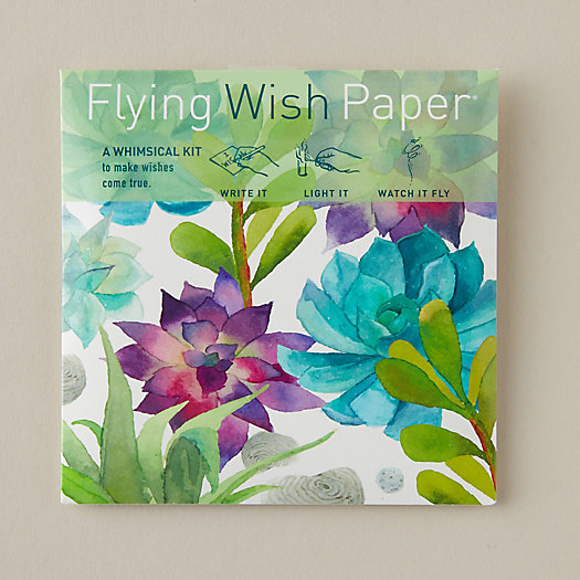View larger image of Flying Wish Paper, Succulents