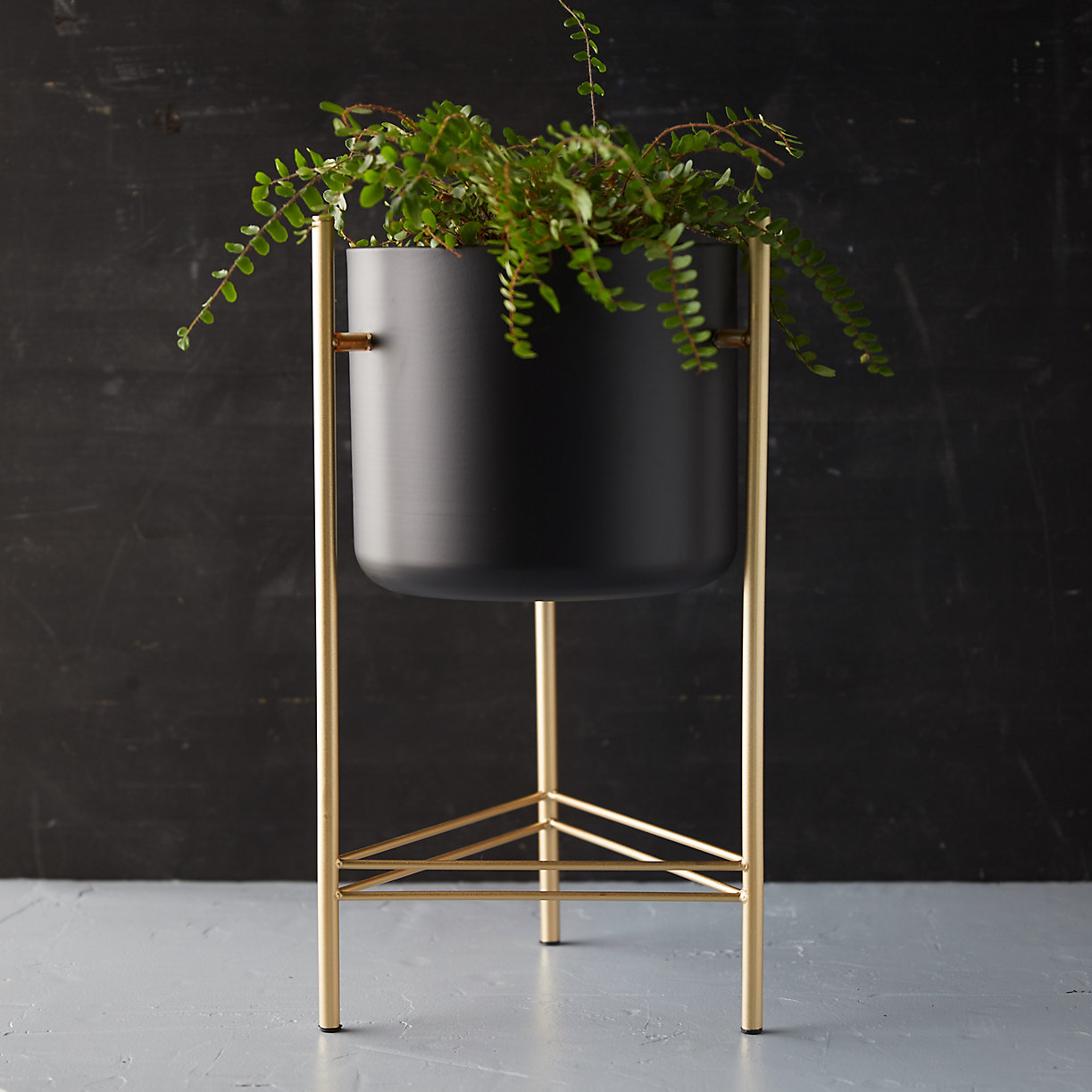 Iron Pot + Brass Stand