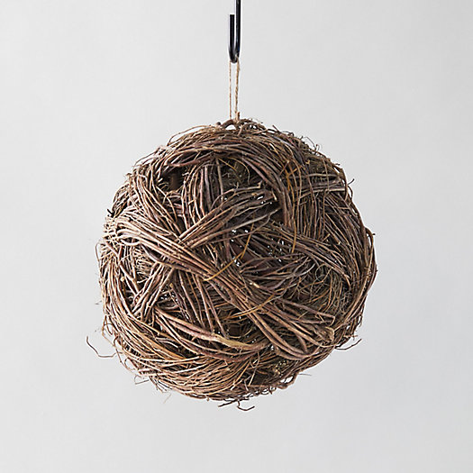 View larger image of Preserved Tagum Ball