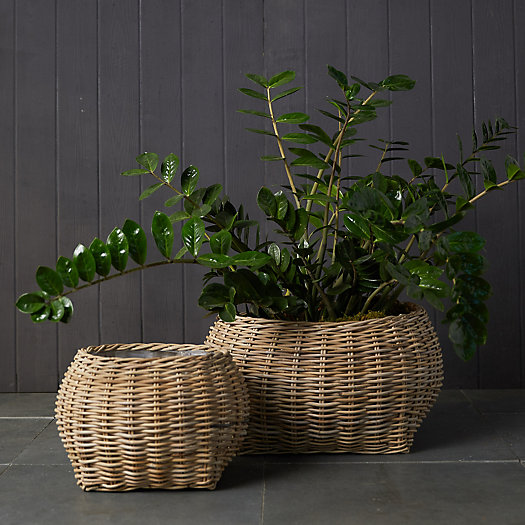 View larger image of Rattan Bowl Basket Planter