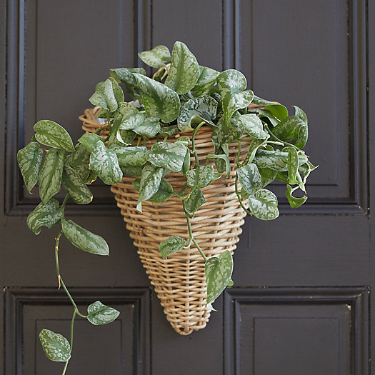 View larger image of Rattan Wall Cone Planter