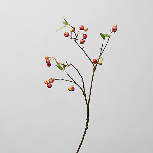 View larger image of Faux Apple Branch