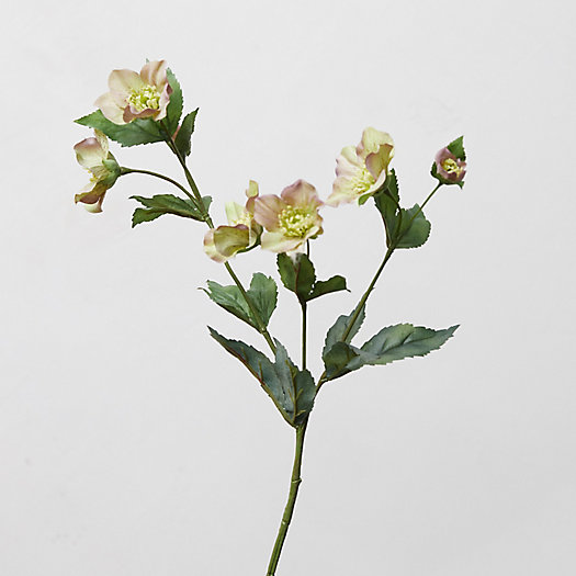 View larger image of Faux Hellebore Blossom Spray