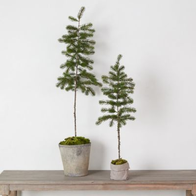 Faux Potted Pine Tree
