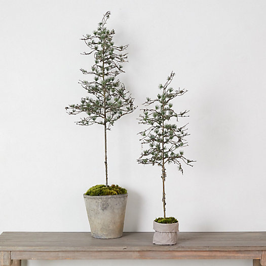 View larger image of Faux Potted Sparse Pine Tree