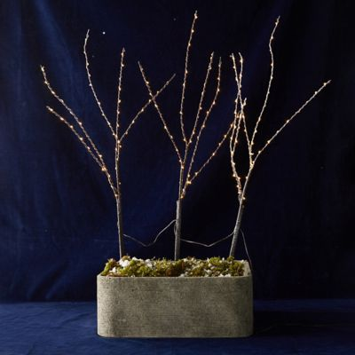 LED Branches, Set of 3