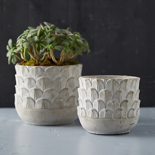 View larger image of Feather Cement Planter