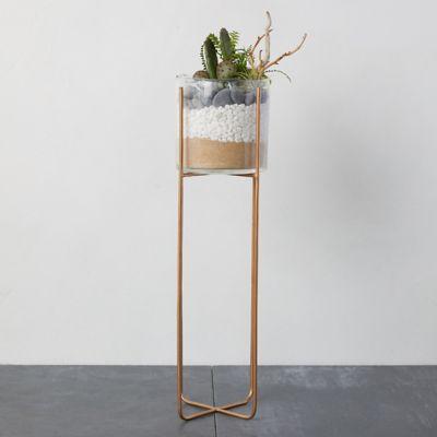 Cylinder Terrarium, Tall Brass Stand