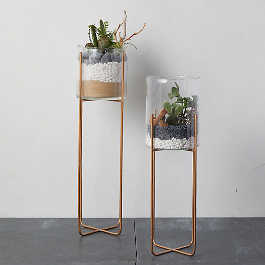 View larger image of Cylinder Terrarium, Tall Brass Stand