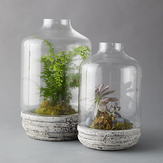 View larger image of Tall Terrarium, Aged Aluminum Base