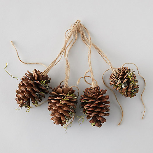View larger image of Lichen Pinecones, Set of 4