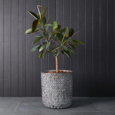 Tall Bamboo Basket Pot
