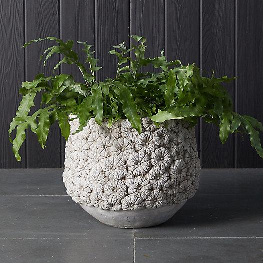 View larger image of Flower Blossom Concrete Planter