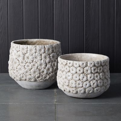 Flower Blossom Concrete Planter