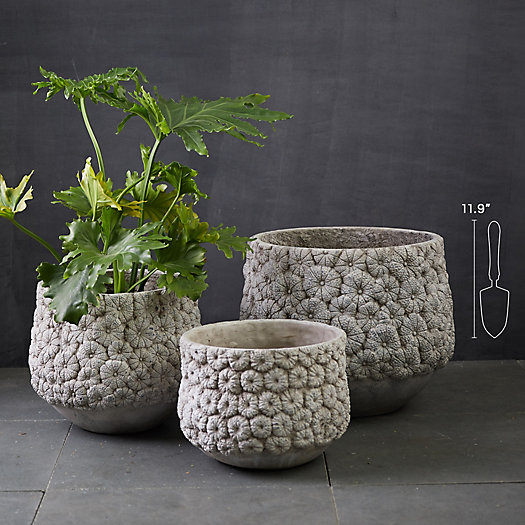 View larger image of Flower Blossom Concrete Planter