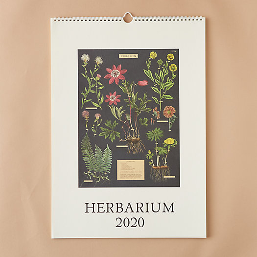 View larger image of 2020 Wall Calendar, Herbarium
