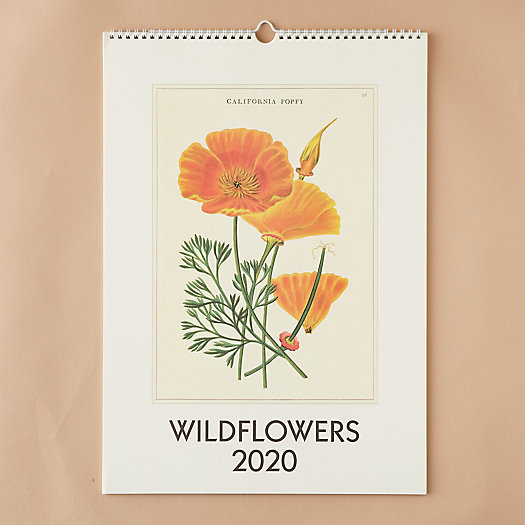 View larger image of 2020 Wall Calendar, Wildflowers