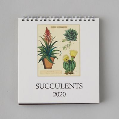 2020 Desk Calendar, Succulents