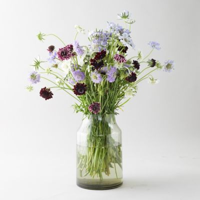 Fresh Scabiosa Bouquet