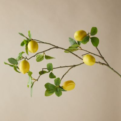 Faux Lemon Tree Branch