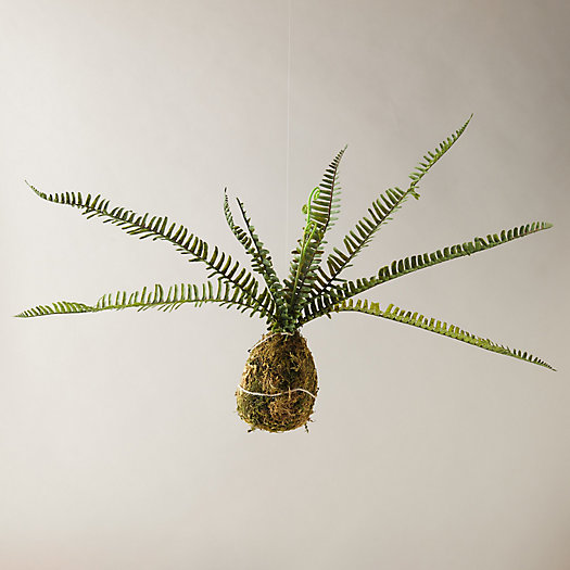 View larger image of Faux Boston Fern + Moss Ball