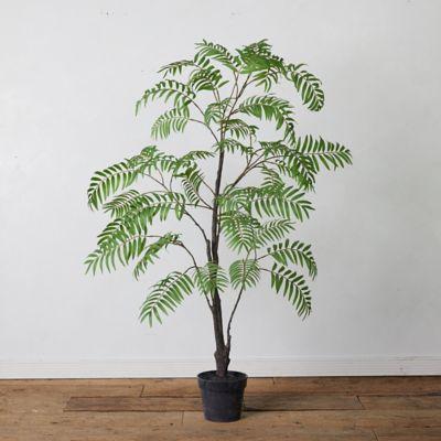 Faux Potted Tree Fern