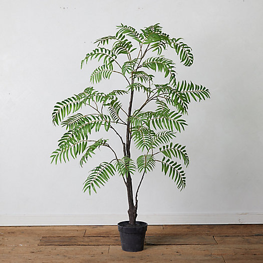 View larger image of Faux Potted Tree Fern