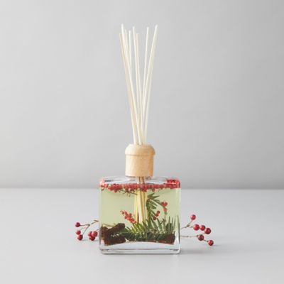 Botanical Reed Diffuser, Currant + Cranberry
