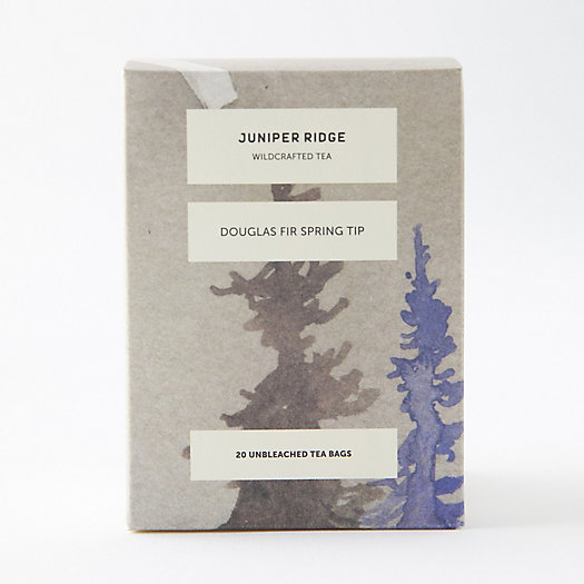 View larger image of Juniper Ridge Tea, Douglas Fir Spring Tip