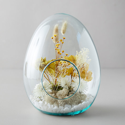View larger image of Open Egg Terrarium