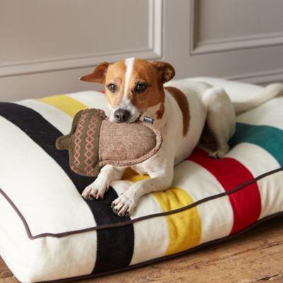 Acorn Dog Toy