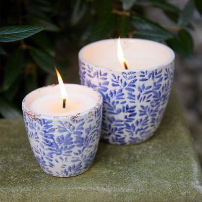 Blue Vine Citronella Candle