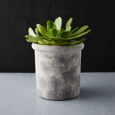 Ridged Jar Planter