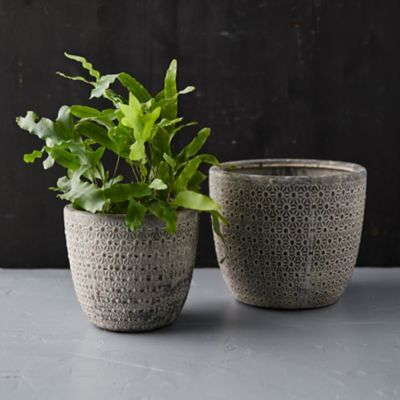 White Wash Petal Pot