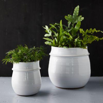 Rounded Ceramic Planter