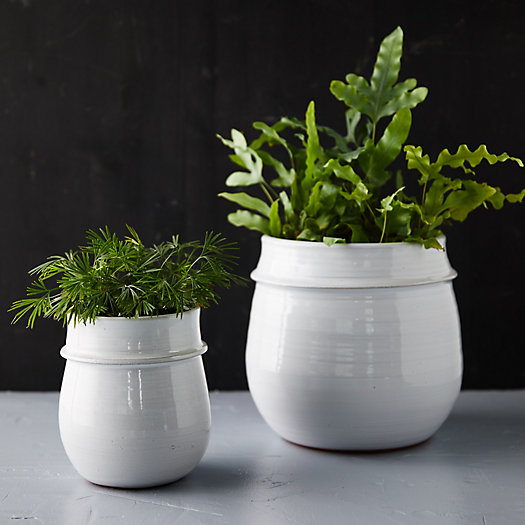 View larger image of Rounded Ceramic Planter