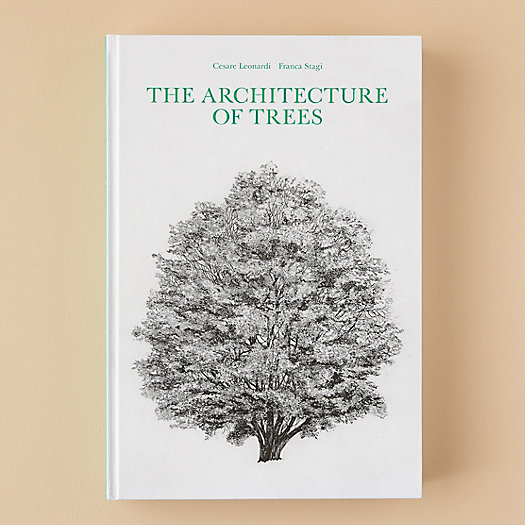 View larger image of The Architecture of Trees