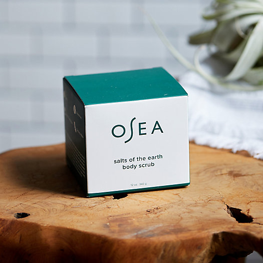 View larger image of OSEA Salts of the Earth Body Scrub