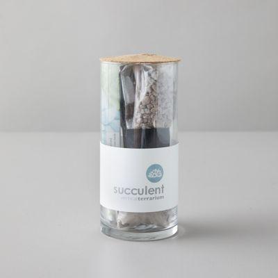 Succulent Vertical Grow Kit