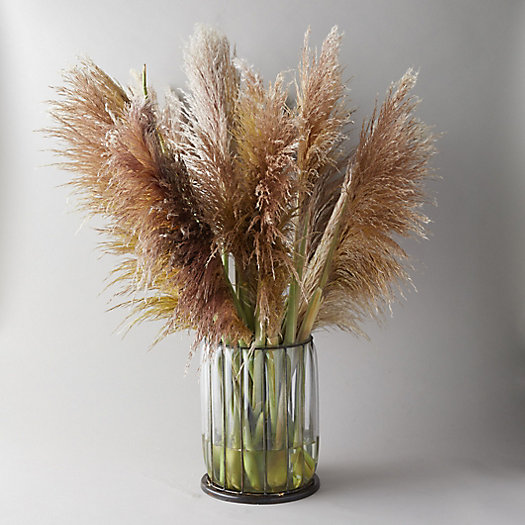 View larger image of Fresh Pampas Grass
