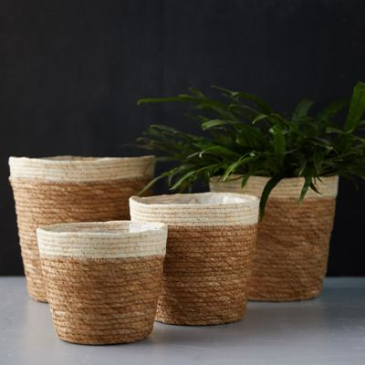 Dipped Seagrass Basket Pot