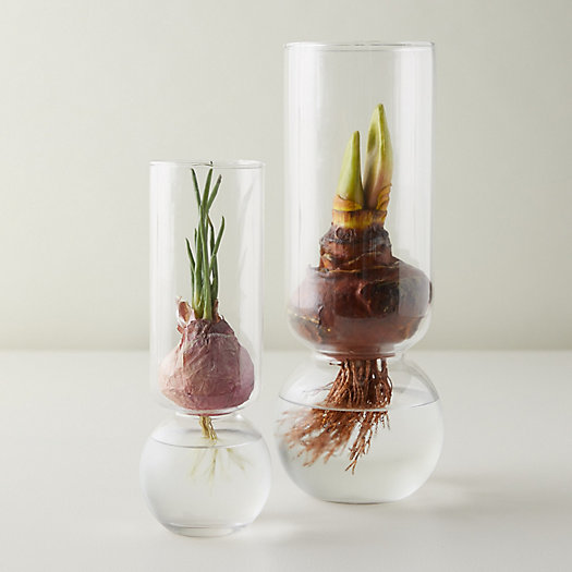View larger image of Tall Bulb Vase