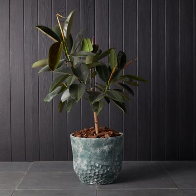 Verdigris Fiber Cement Pot