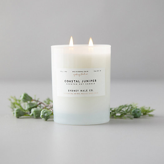 View larger image of Sydney Hale Candle, Coastal Juniper