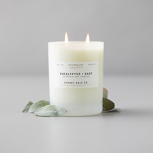 View larger image of Sydney Hale Candle, Eucalyptus + Sage