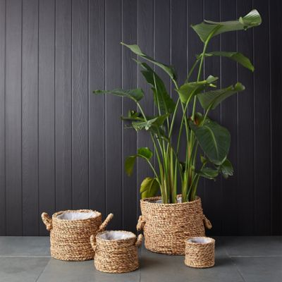 Cylinder Basket Planter with Handles