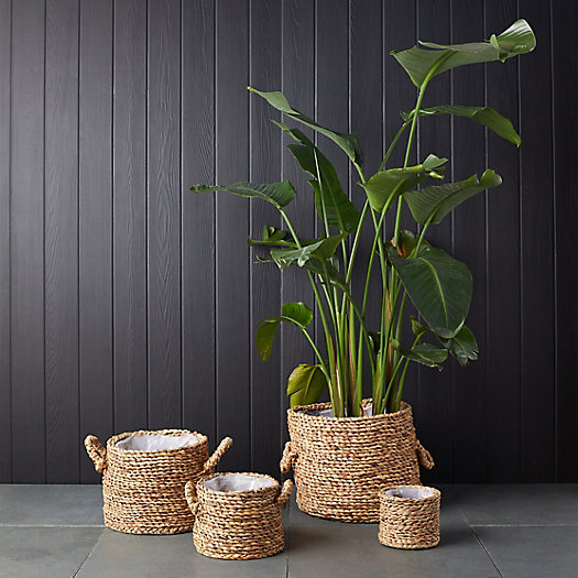 View larger image of Cylinder Basket Planter with Handles